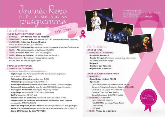 Octobre rose Var-Est Littoral 2014- Journée Rose