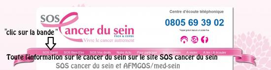 SOS cancer du sein et AFMGOS