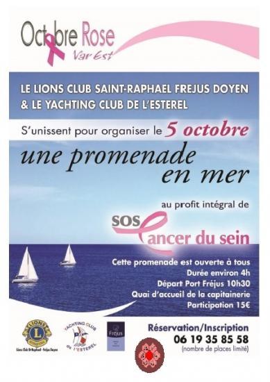 bateaux-et-lion-s-club-1.jpg
