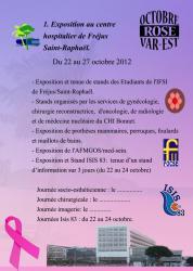 page-1-octobre-rose-var-est-2012.jpg